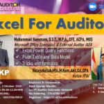 Excel For Auditor